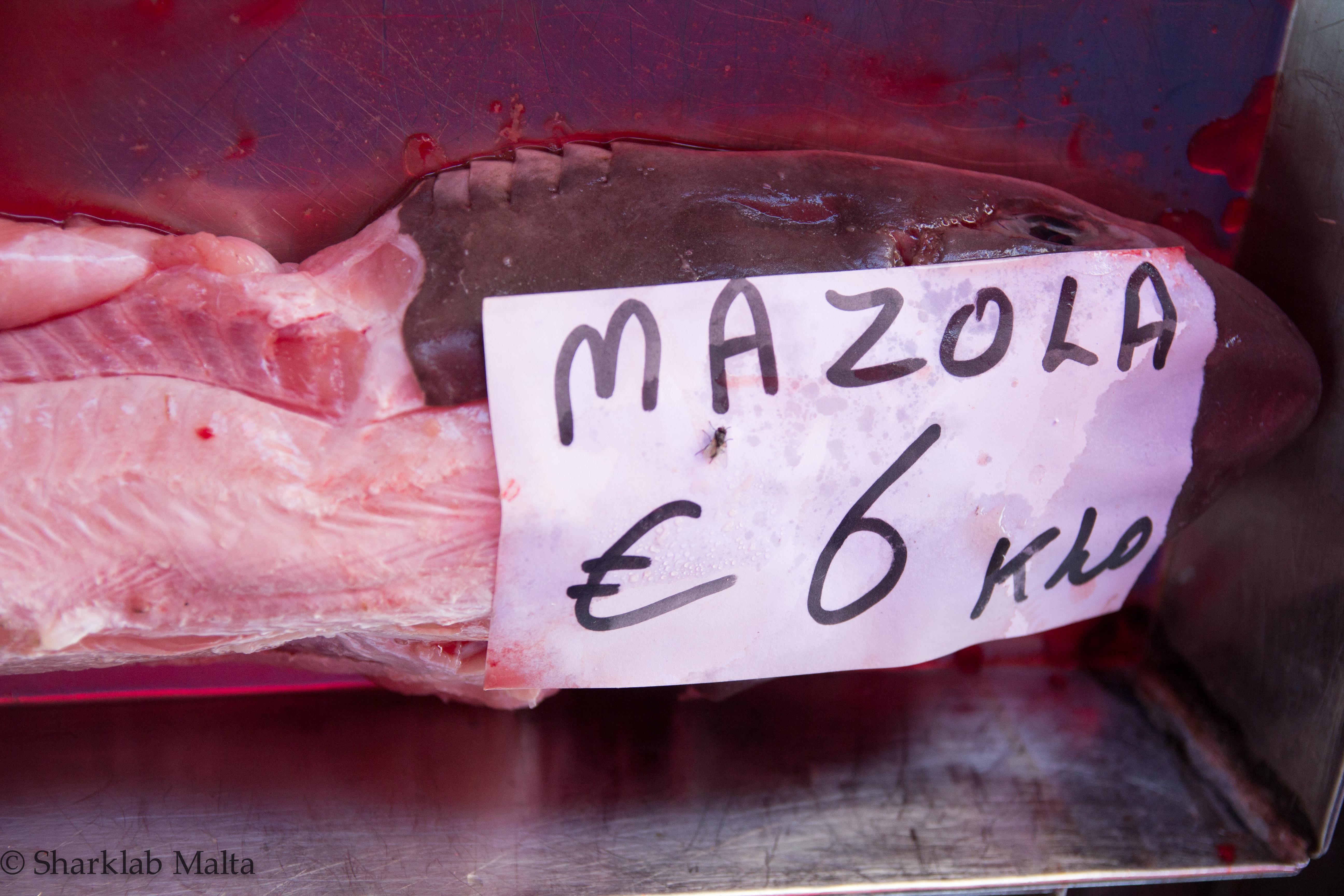 Generica denominazione in maltese