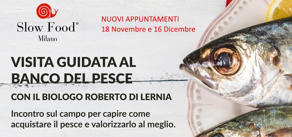 Nuovi Appuntamenti Visita guidata al banco del pesce con Roberto Di Lernia