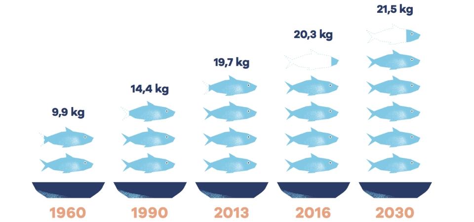 I consumi di pesce in città – Cattive abitudini e Buone pratiche