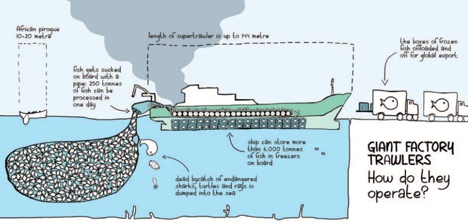 Svuotano il mare e spingono le migrazioni: la responsabilità di industria e cambiamento climatico