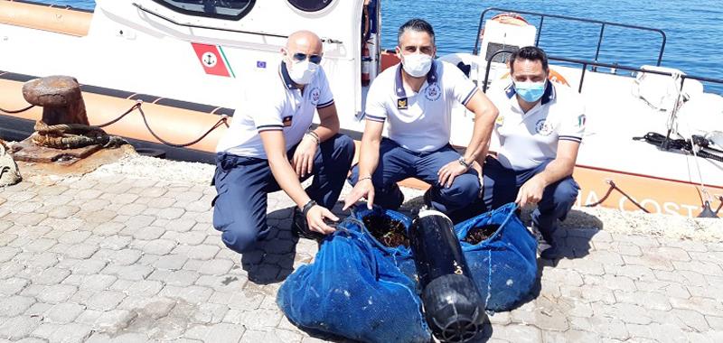Pesca abusiva nel Siracusano, sequestrati dalla Guardia costiera 1500 ricci.